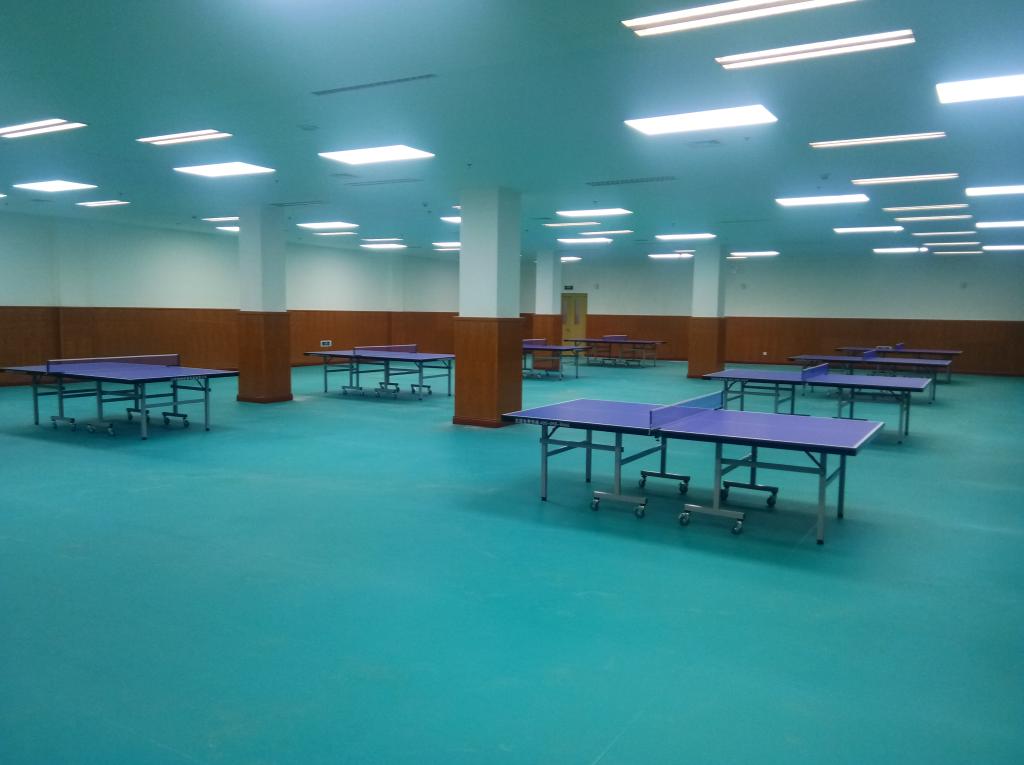 北京体育器材,红双喜乒乓球台桌