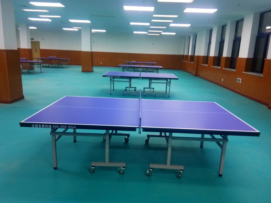 体育器材,红双喜乒乓球台桌