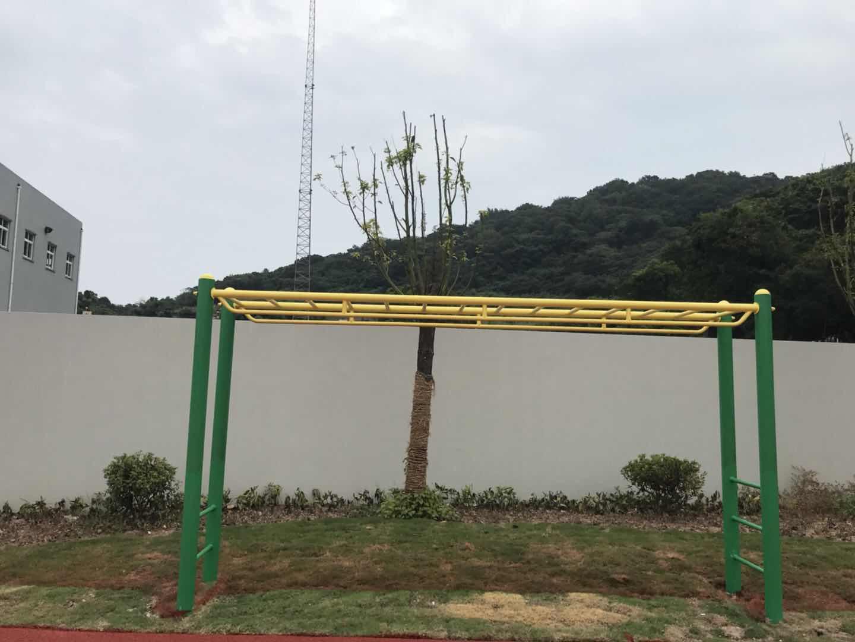 云梯 (3).JPG
